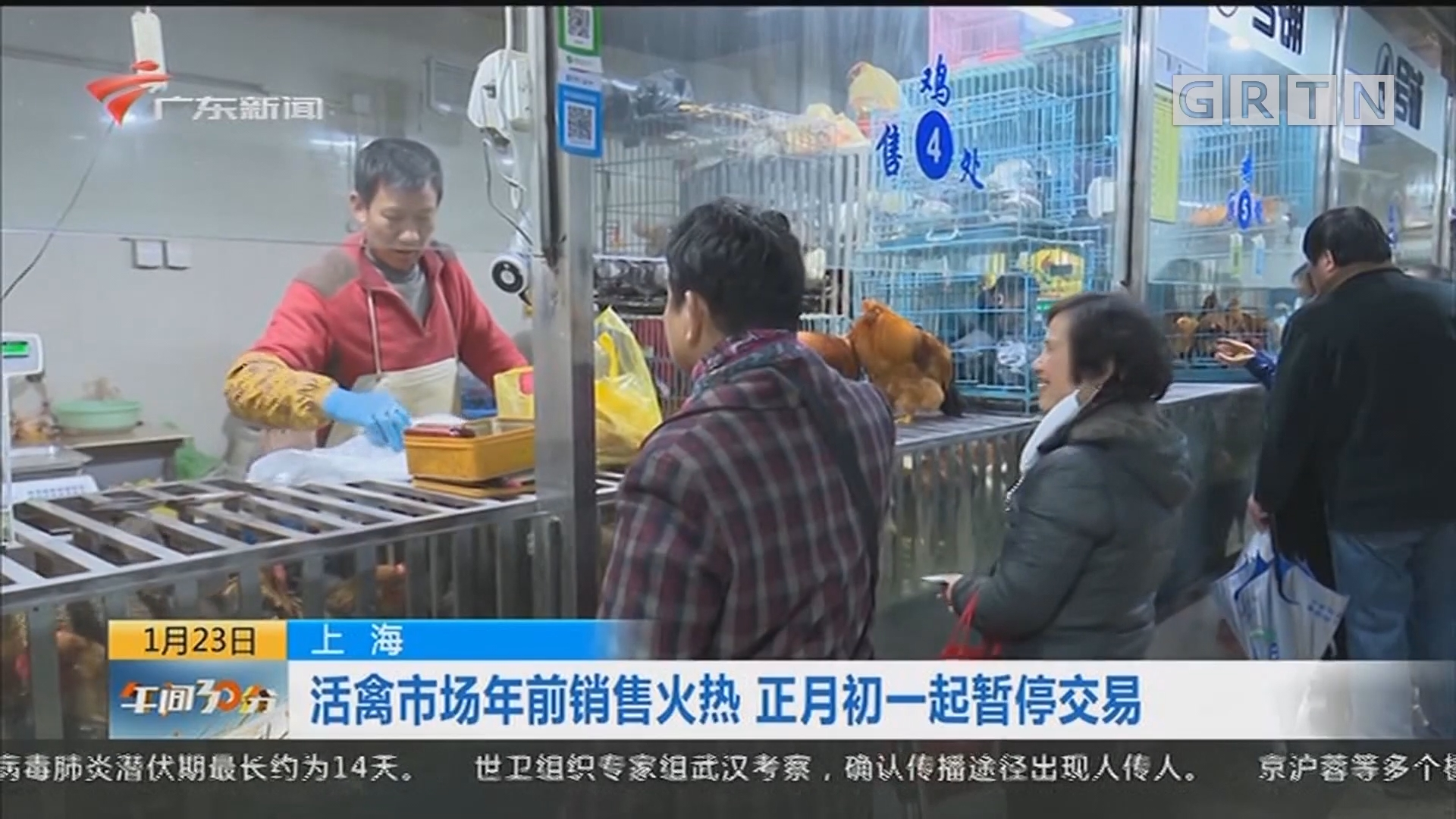 上海:活禽市场年前销售火热 正月初一起暂停交易