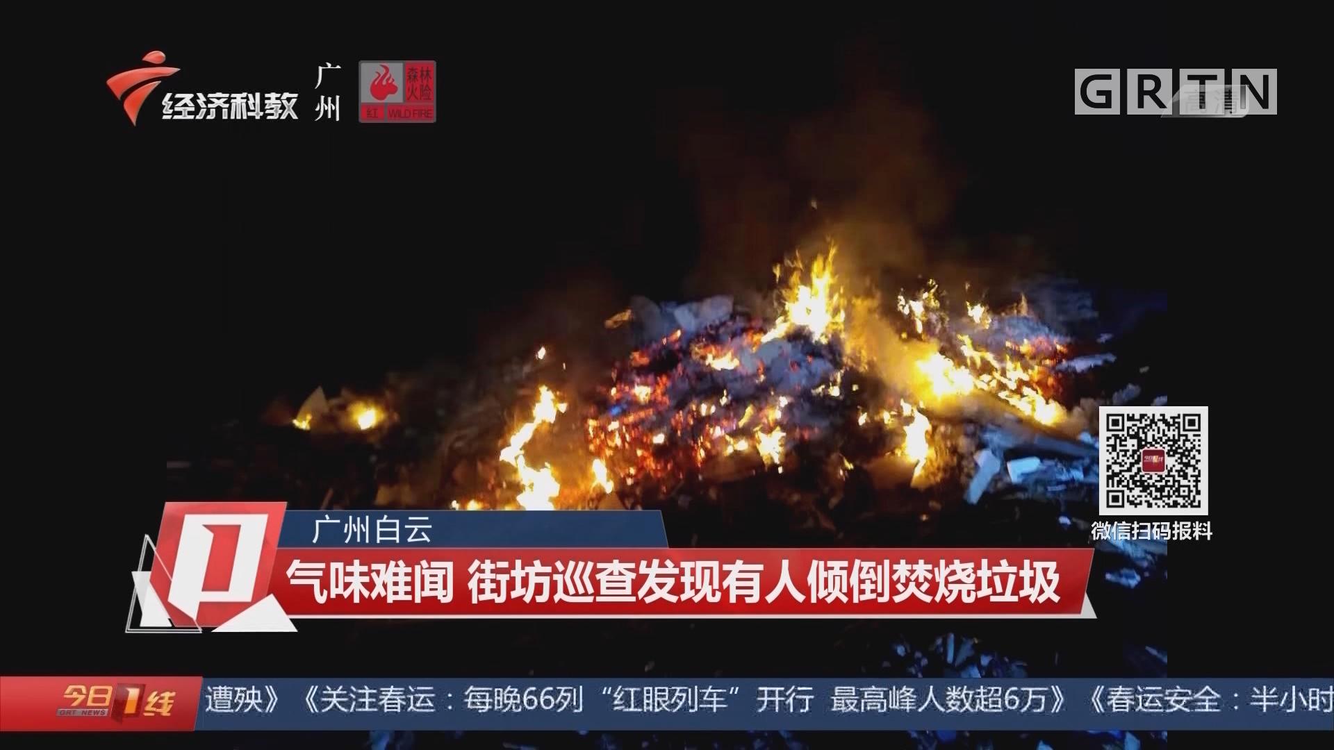 广州白云:气味难闻 街坊巡查发现有人倾倒焚烧垃圾