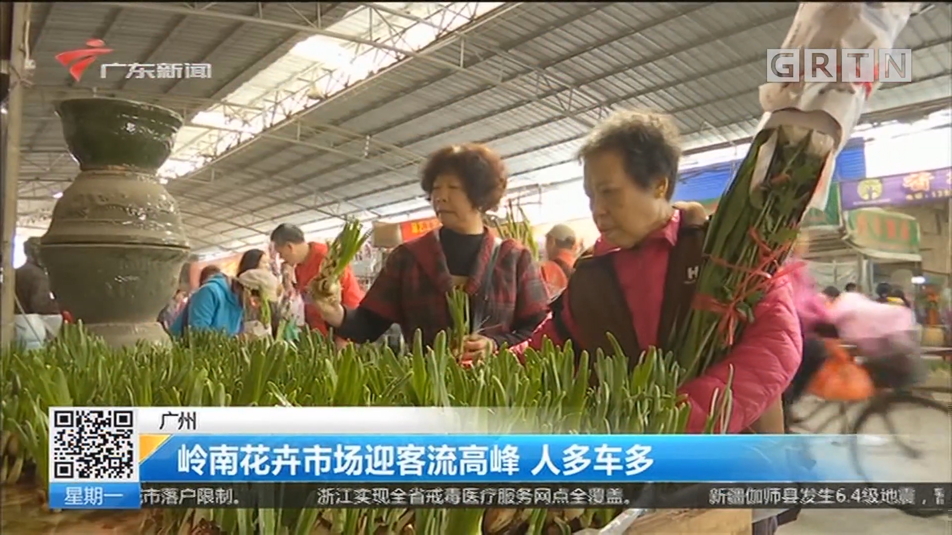 广州:岭南花卉市场迎客流高峰 人多车多