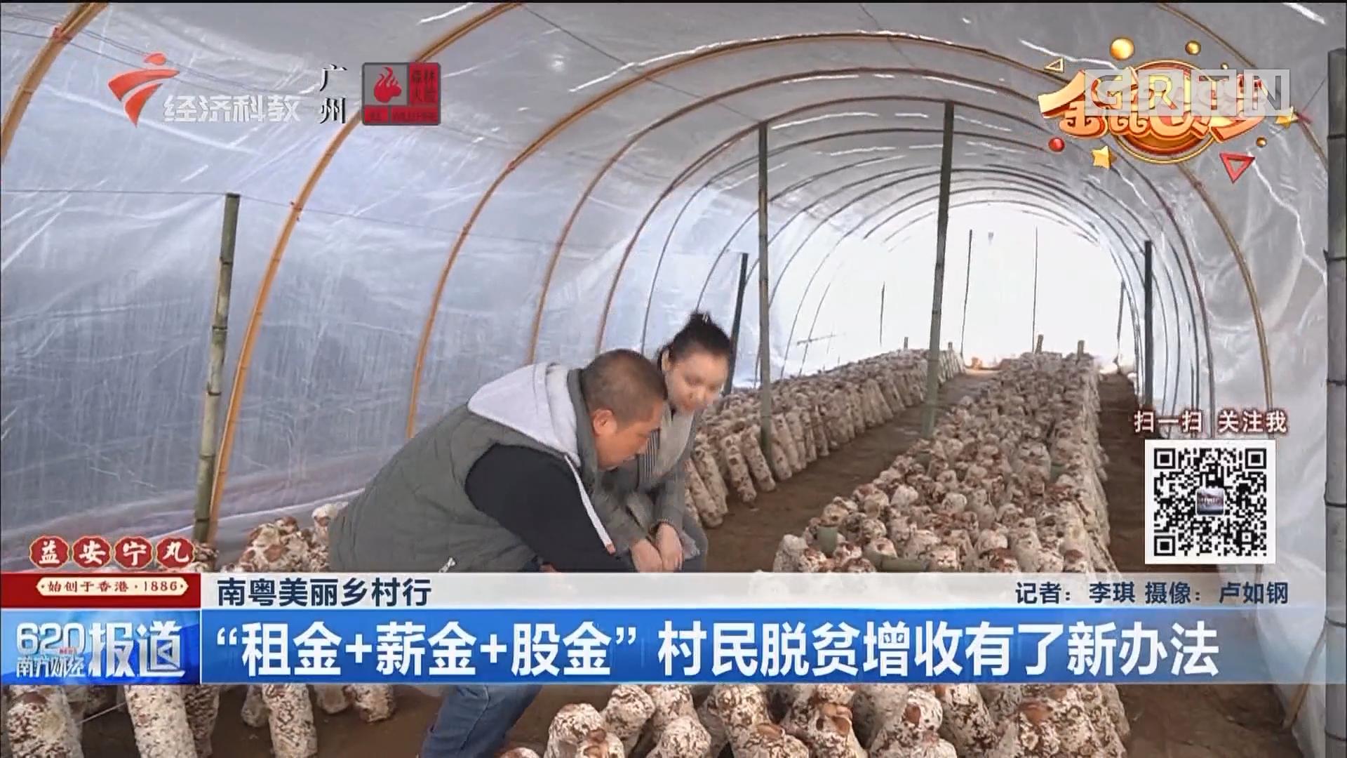 """南粤美丽乡村行 """"租金+薪金+股金"""" 村民脱贫增收有了新办法"""