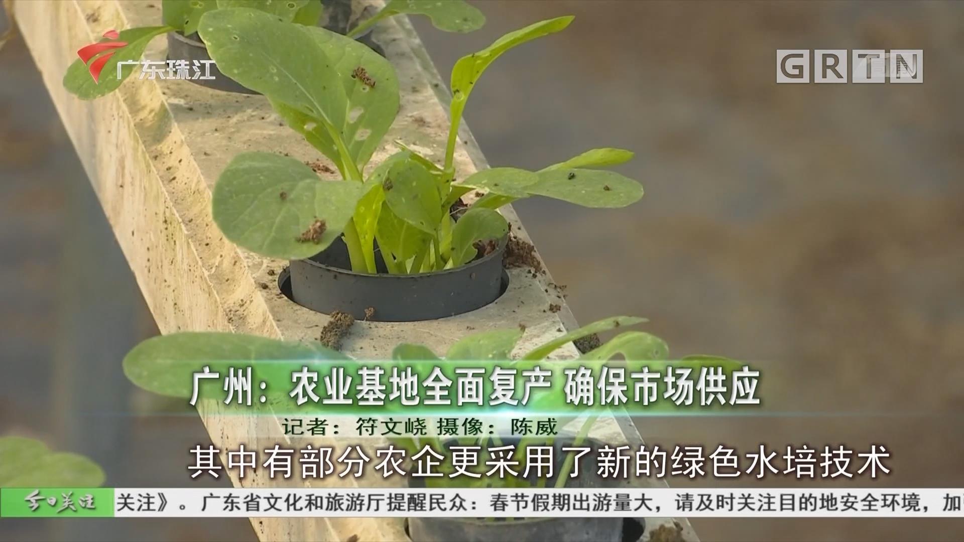广州:农业基地全面复产 确保市场供应