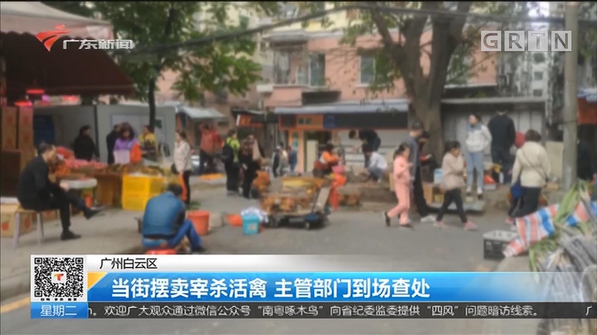 广州白云区:当街摆卖宰杀活禽 主管部门到场查处