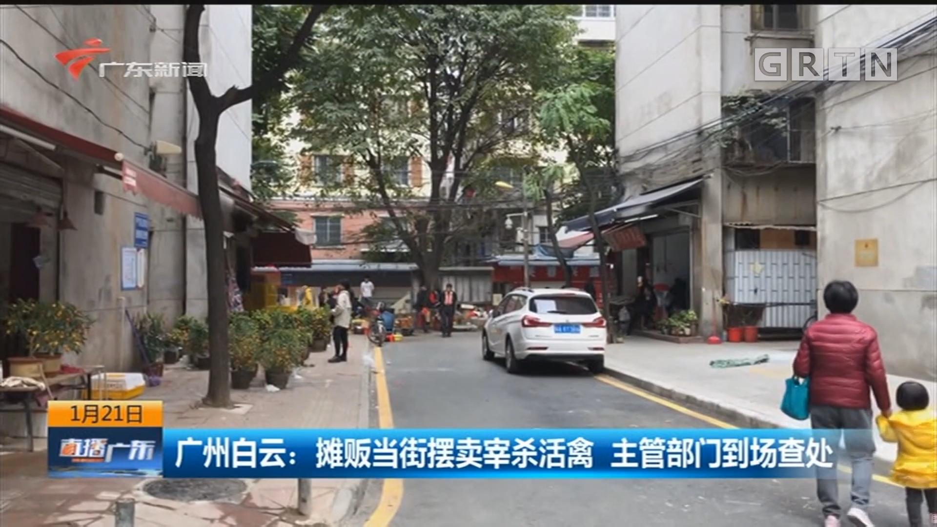 广州白云:摊贩当街摆卖宰杀活禽 主管部门到场查处
