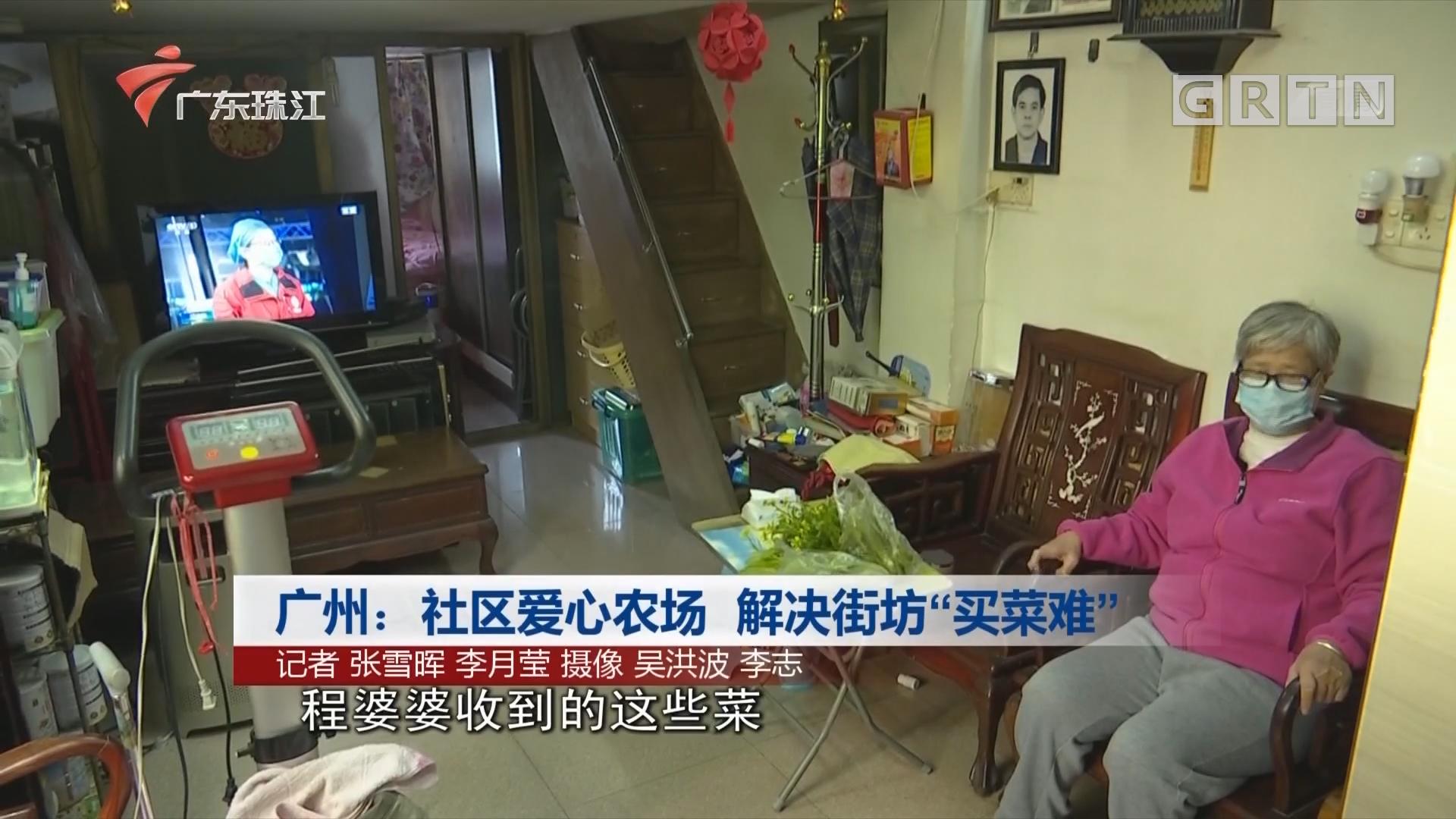 """广州:社区爱心农场 解决街坊""""买菜难"""""""