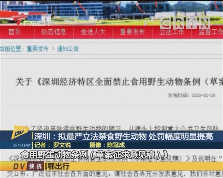 (DV现场)深圳:拟最严立法禁食野生动物 处罚幅度明显提高