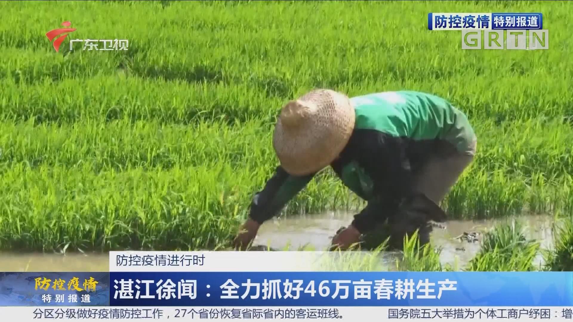 防控疫情进行时 湛江徐闻:全力抓好46万亩春耕生产
