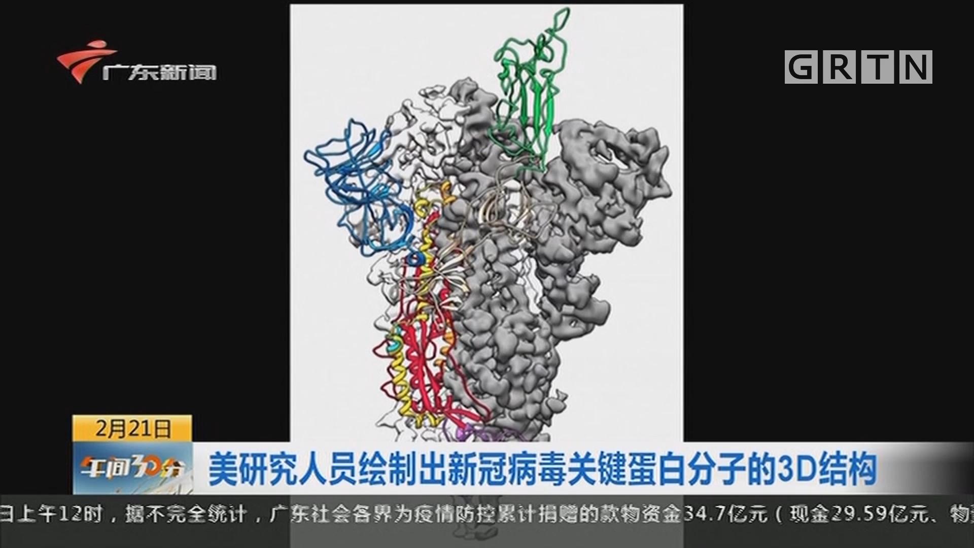 美研究人員繪制出新冠病毒關鍵蛋白分子的3D結構