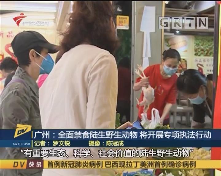(DV现场)广州:全面禁食陆生野生动物 将开展专项执法行动