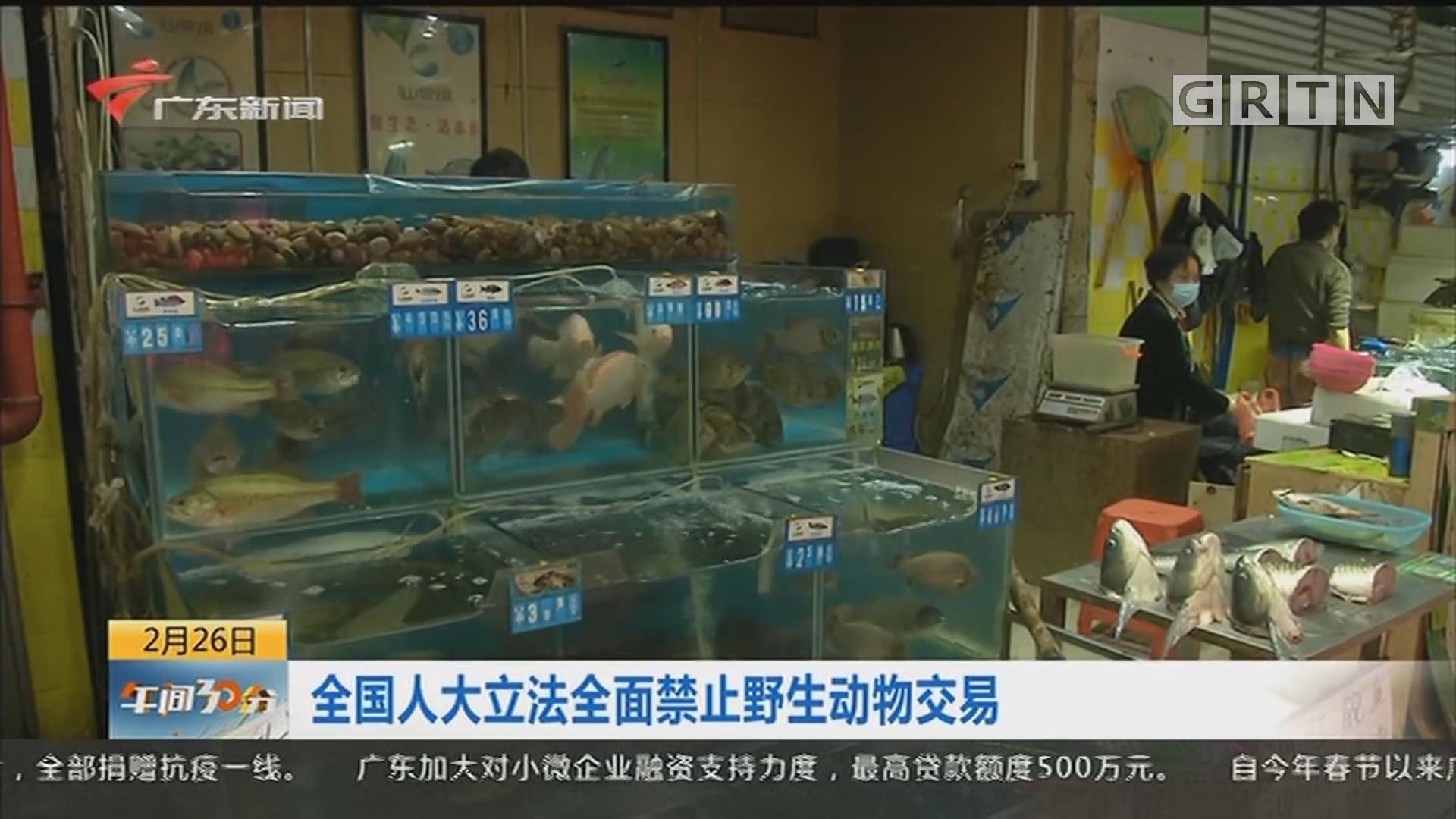 全国人大立法全面禁止野生动物交易