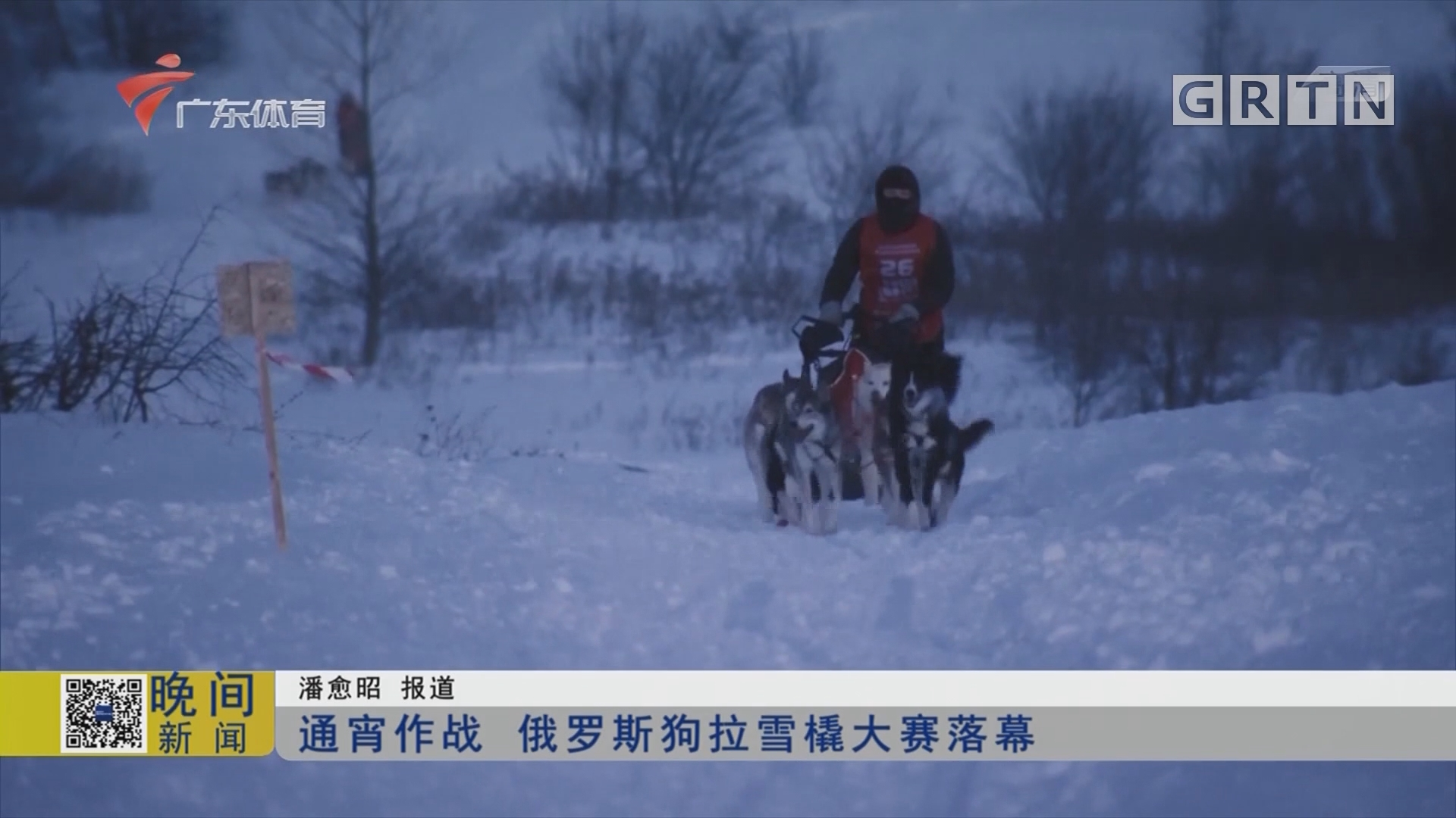 通宵作战 俄罗斯狗拉雪橇大赛落幕