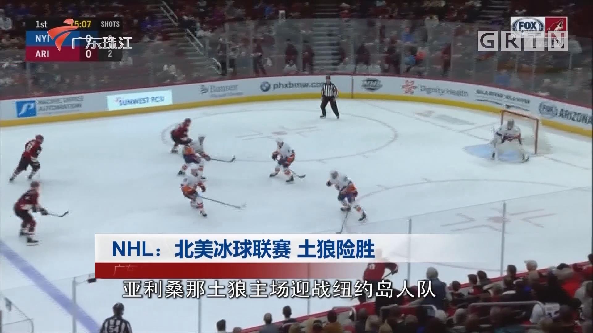 NHL:北美冰球联赛 土狼险胜