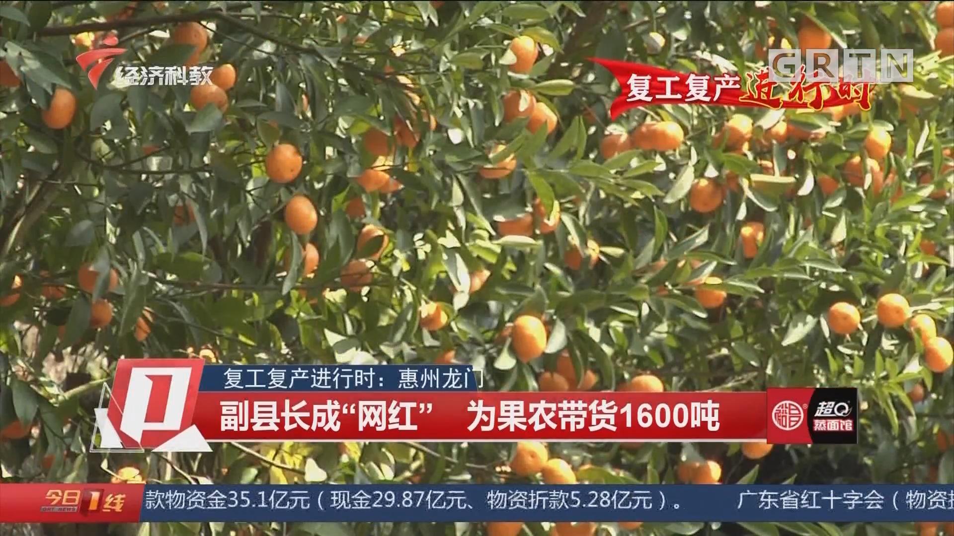 """复工复产进行时:惠州龙门 副县长成""""网红"""" 为果农带货1600吨"""