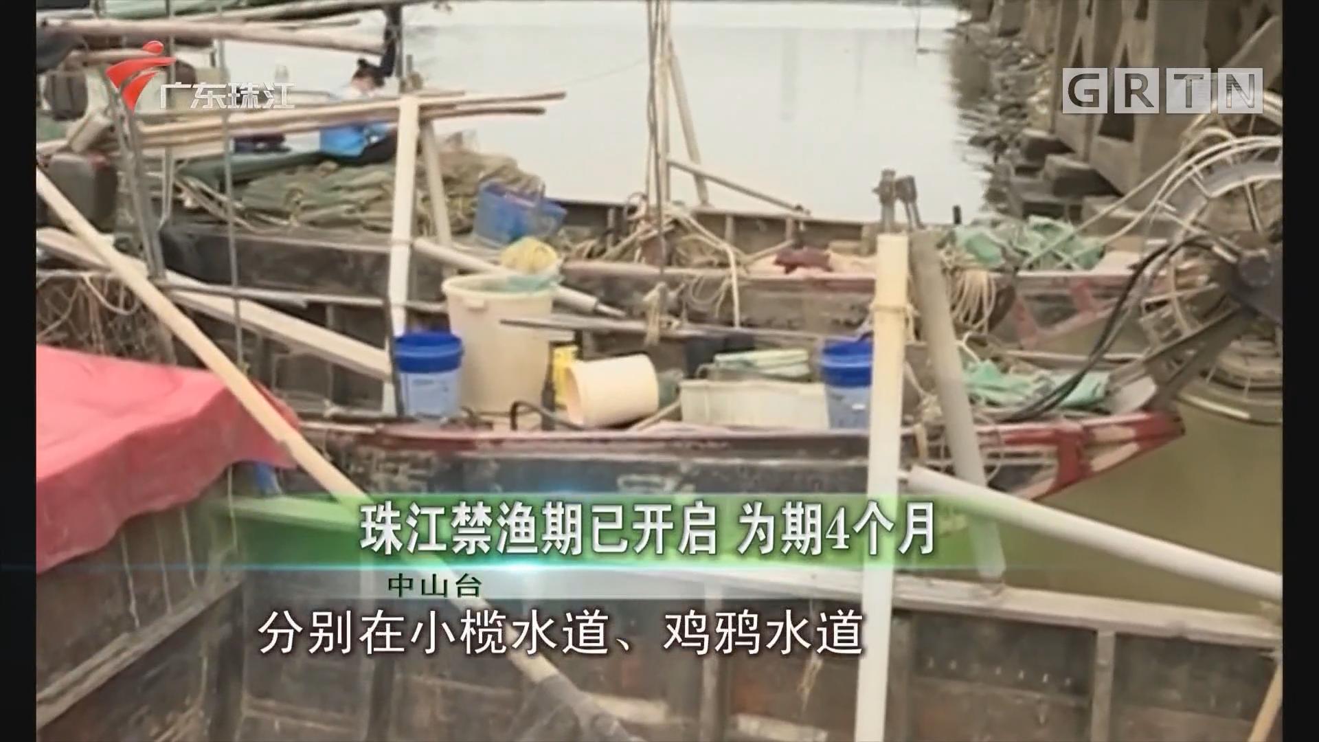 珠江禁渔期已开启 为期4个月