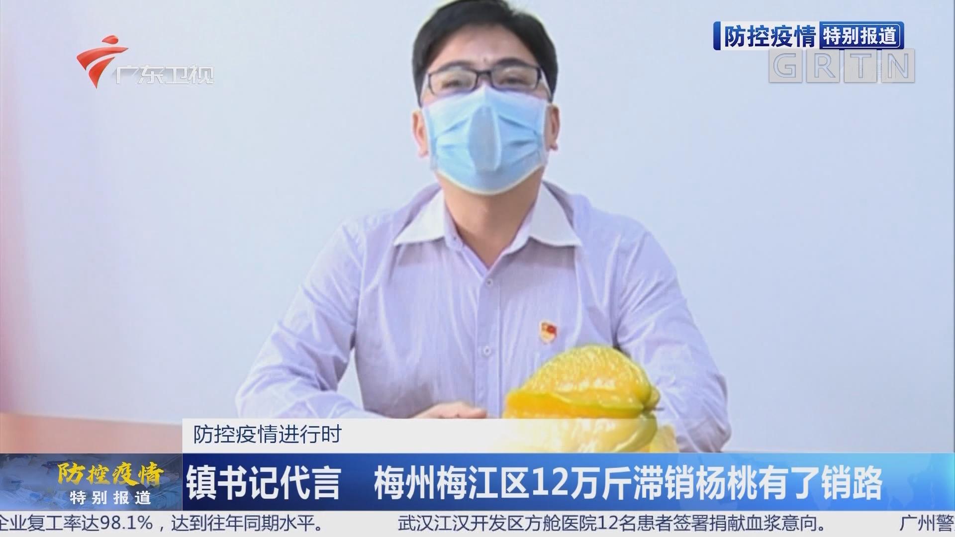 防控疫情进行时:镇书记代言 梅州梅江区12万斤滞销杨桃有了销路