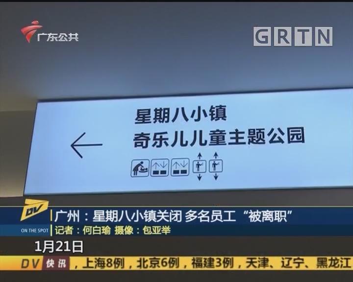"""(DV现场)广州:星期八小镇关闭 多名员工""""被离职"""""""