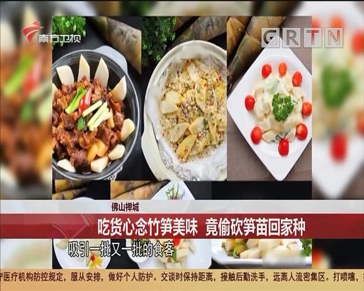 佛山禪城 吃貨心念竹筍美味 竟偷砍筍苗回家種
