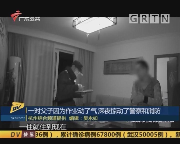 (DV现场)一对父子因为作业动了气 深夜惊动了警察和消防