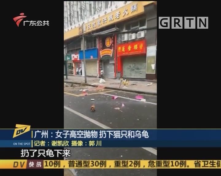 (DV现场)广州:女子高空抛物 扔下猫只和乌龟