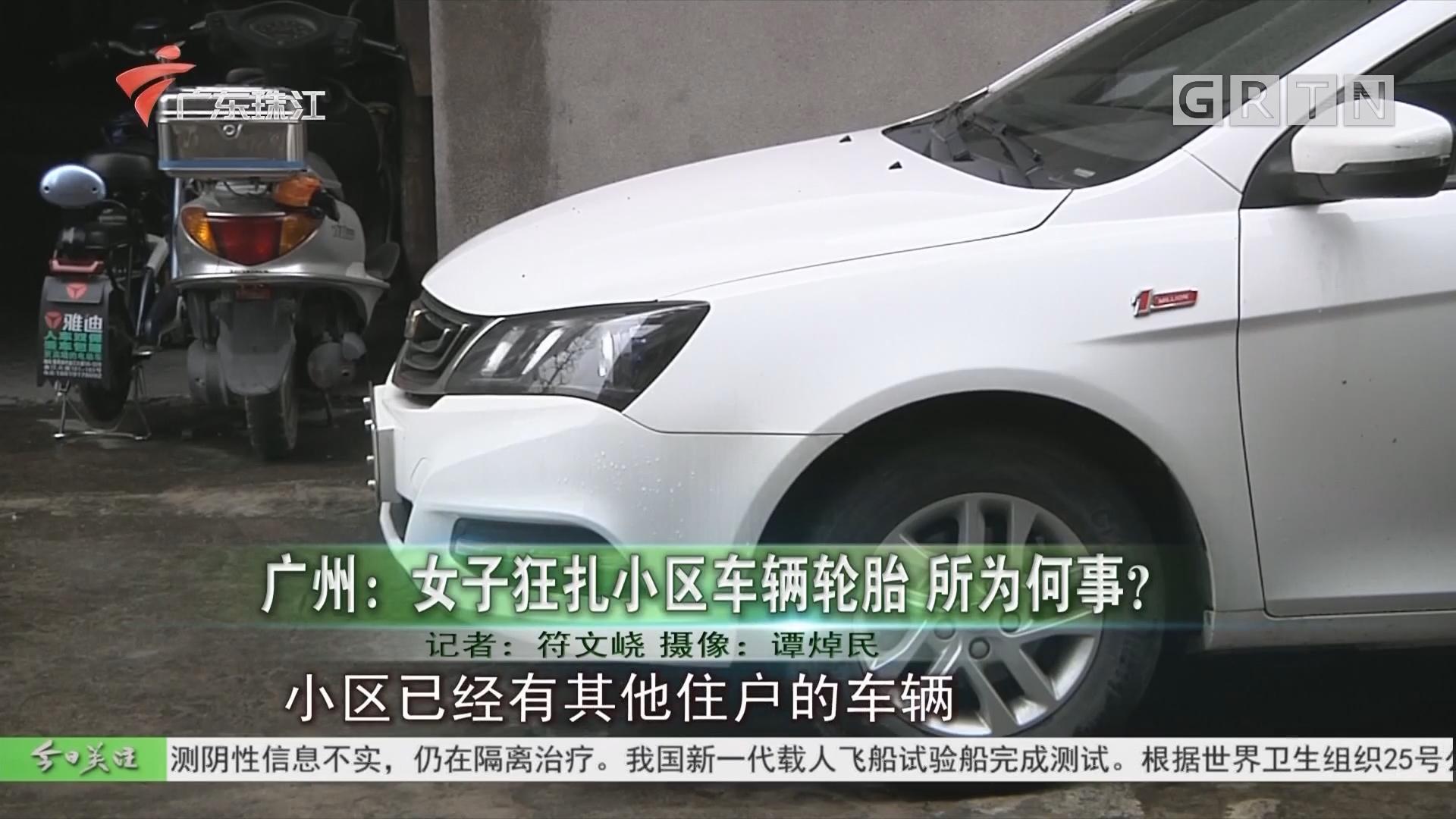 广州:女子狂扎小区车辆轮胎 所为何事?