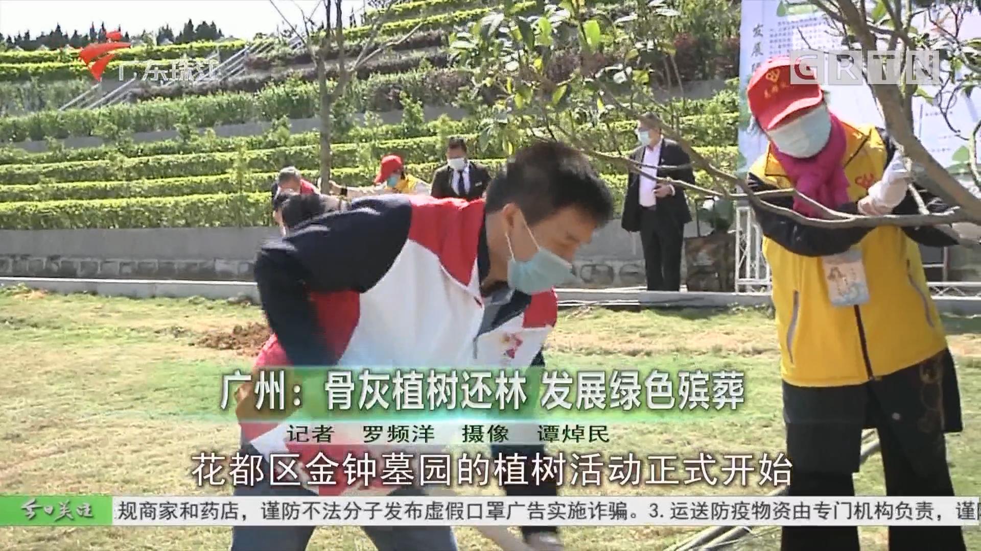 广州:骨灰植树还林 发展绿色殡葬