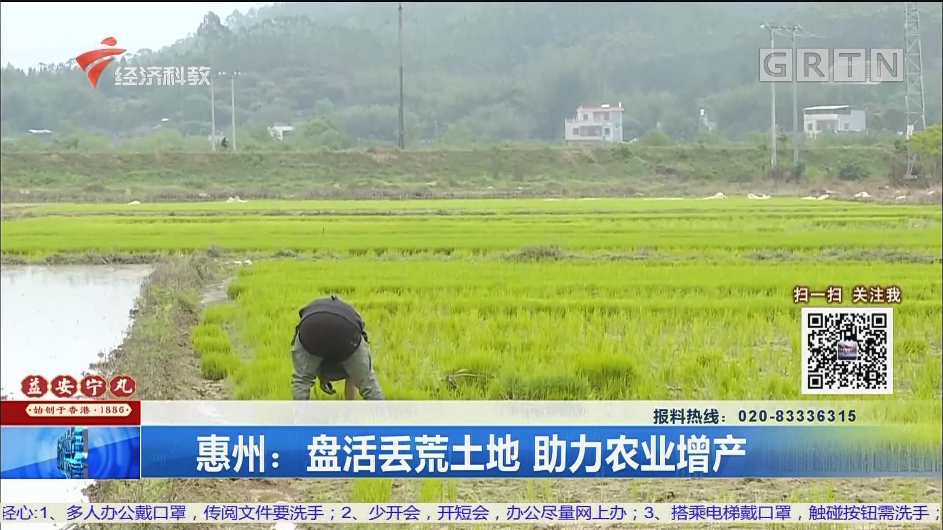惠州:盘活丢荒土地 助力农业增产