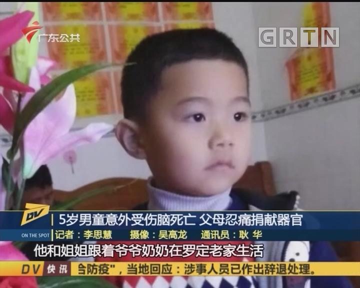 (DV现场)5岁男童意外受伤脑死亡 父母忍痛捐献器官