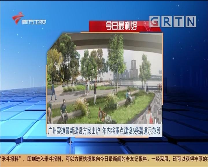 今日最利好 广州碧道最新建设方案出炉 年内将重点建设6条碧道示范段
