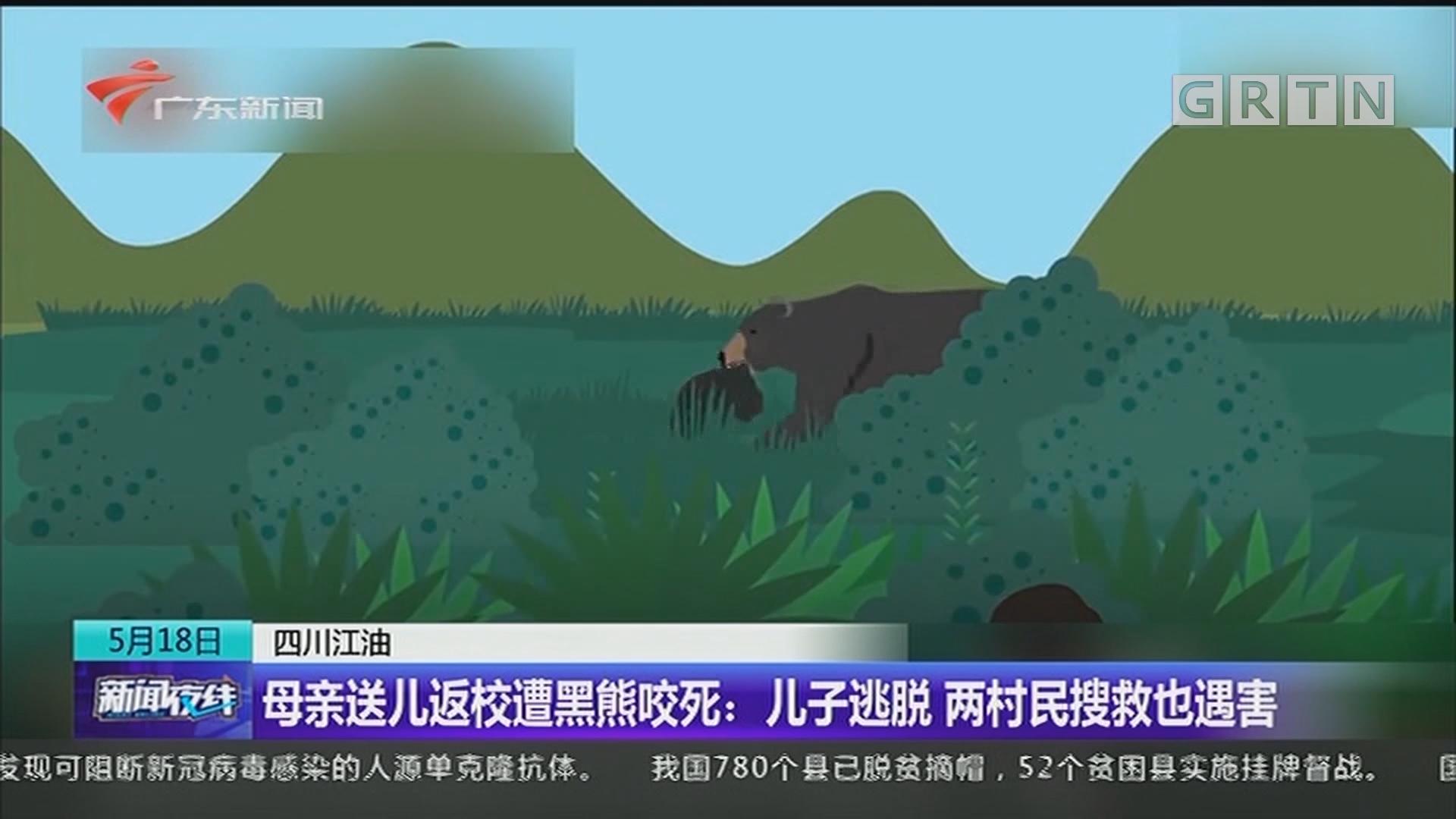 四川江油 母亲送儿返校遭黑熊咬死:儿子逃脱 两村民搜救也遇害