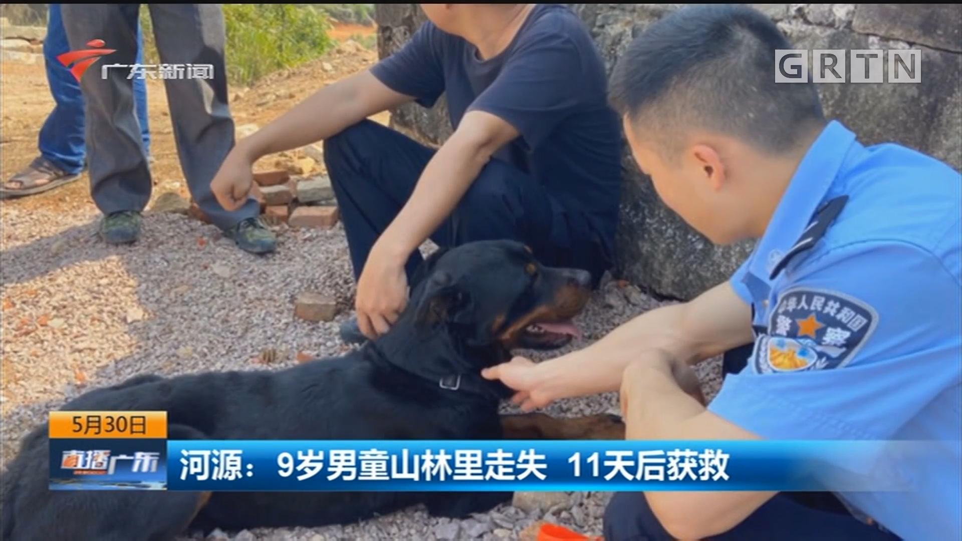 河源:9岁男童山林里走失 11天后获救