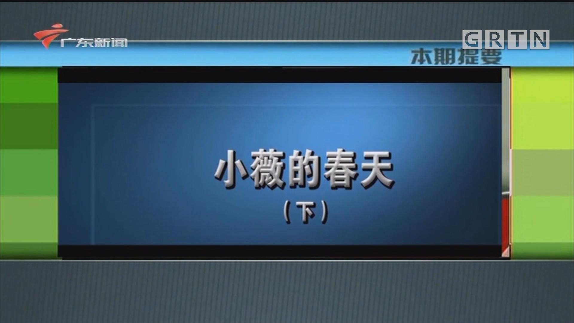 [HD][2020-05-19]新闻故事:小薇的春天(下)