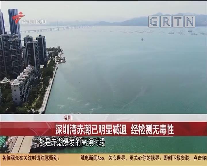 深圳 深圳灣赤潮已明顯減退 經檢測無毒性