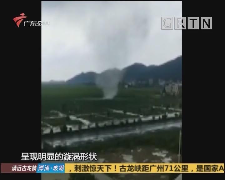 江门:平地刮起尘卷风 幸无人受伤