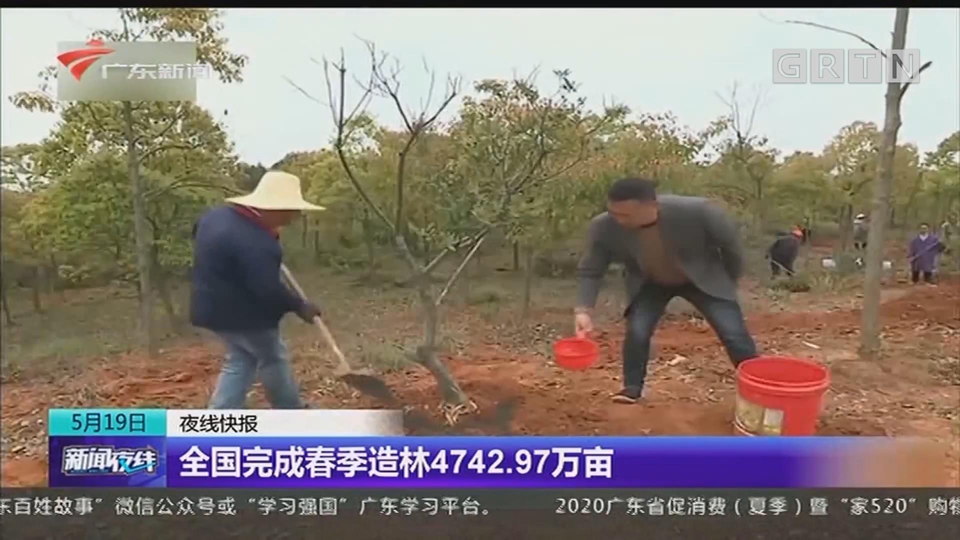全国完成春季造林4742.97万亩