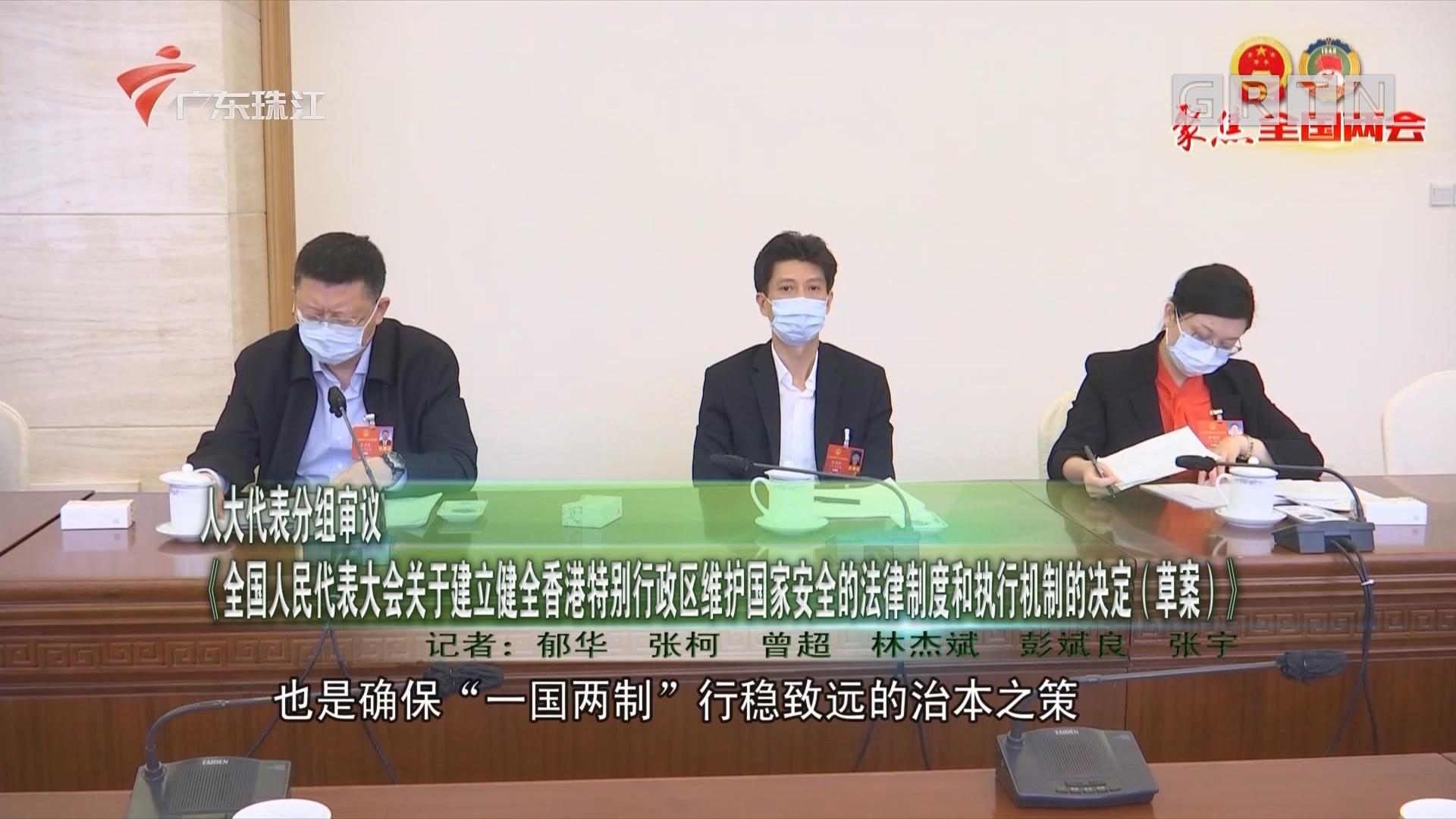 人大代表分组审议 《全国人民代表大会关于建立健全香港特别行政区维护国家安全的法律制度和执行机制的决定(草案)》