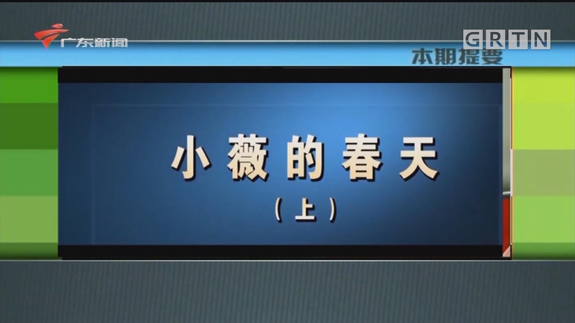 [HD][2020-05-18]新闻故事:小薇的春天(上)