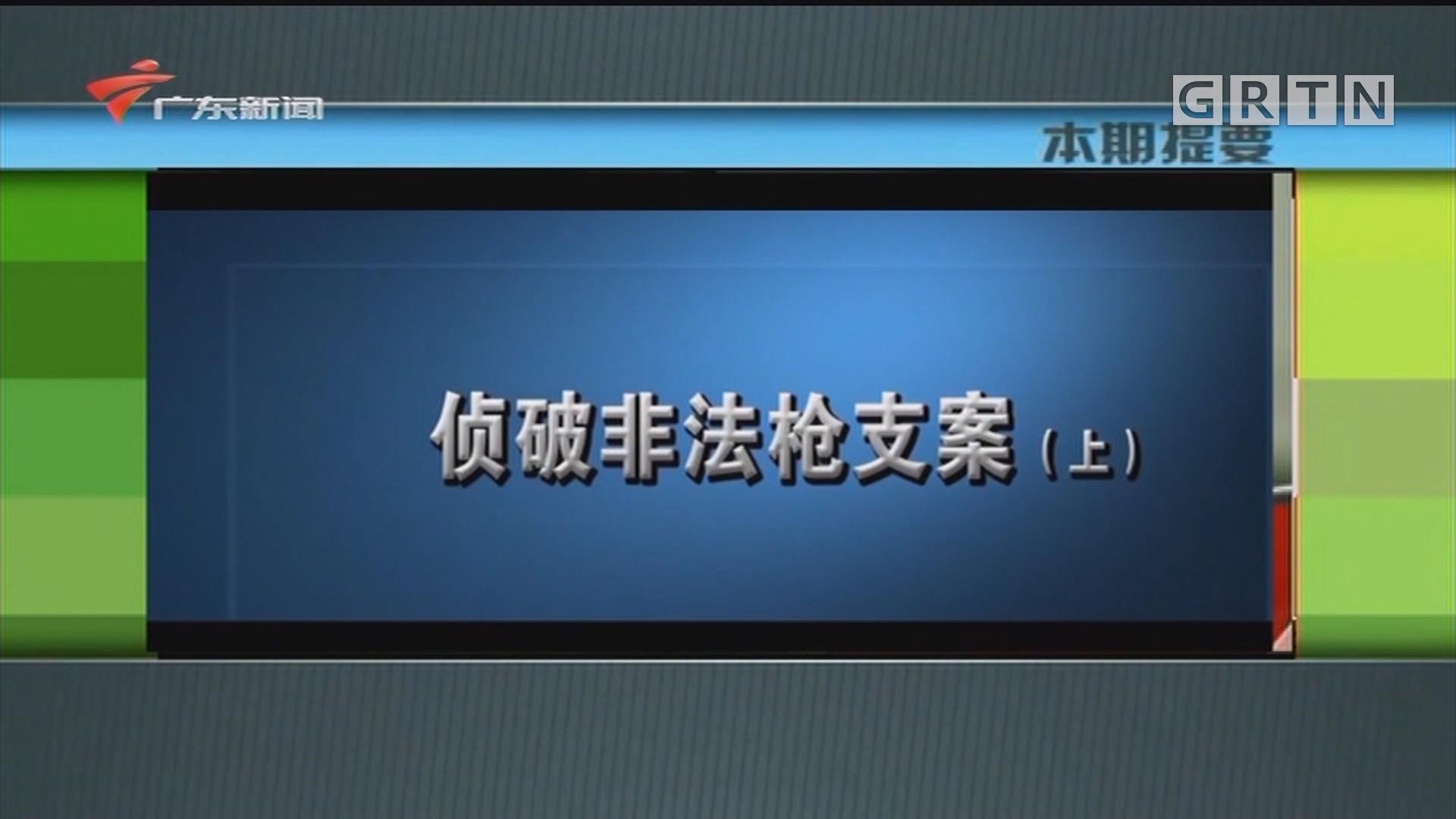 [HD][2020-05-27]新闻故事:侦破非法枪支案(上)