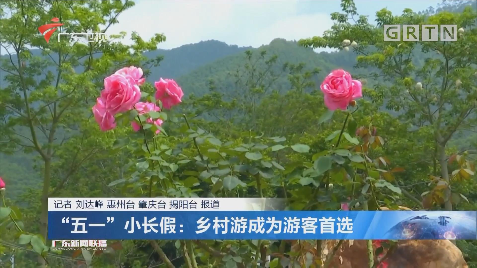 """""""五一""""小長假:鄉村游成為游客首選"""