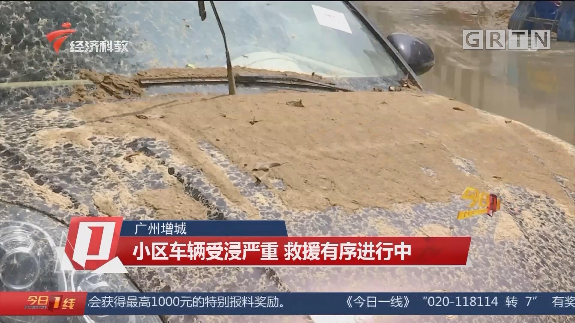 广州增城 小区车辆受浸严重 救援有序进行中