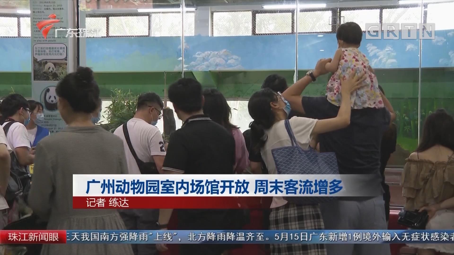 广州动物园室内场馆开放 周末客流增多