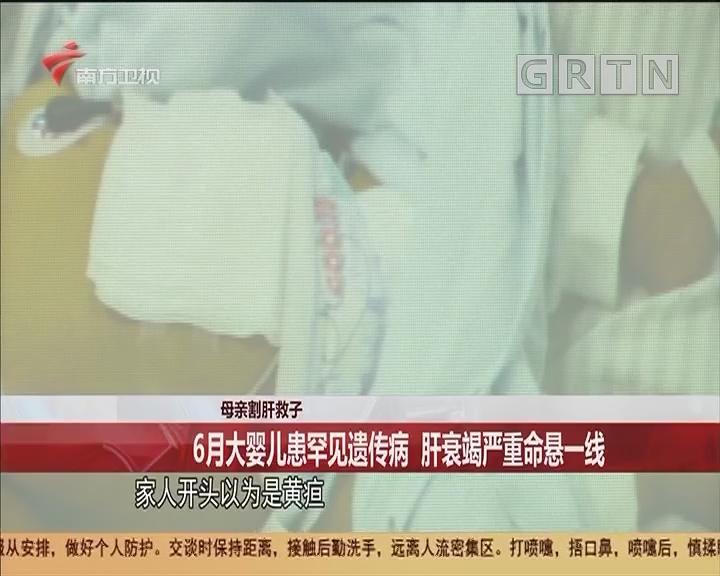 母親割肝救子 6月大嬰兒患罕見遺傳病 肝衰竭嚴重命懸一線