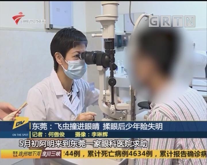 东莞:飞虫撞进眼睛 揉眼后少年险失明
