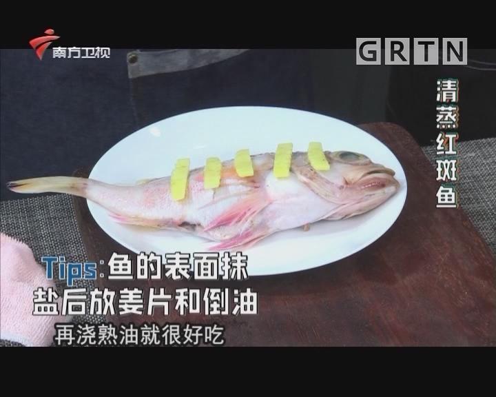 清蒸红斑鱼