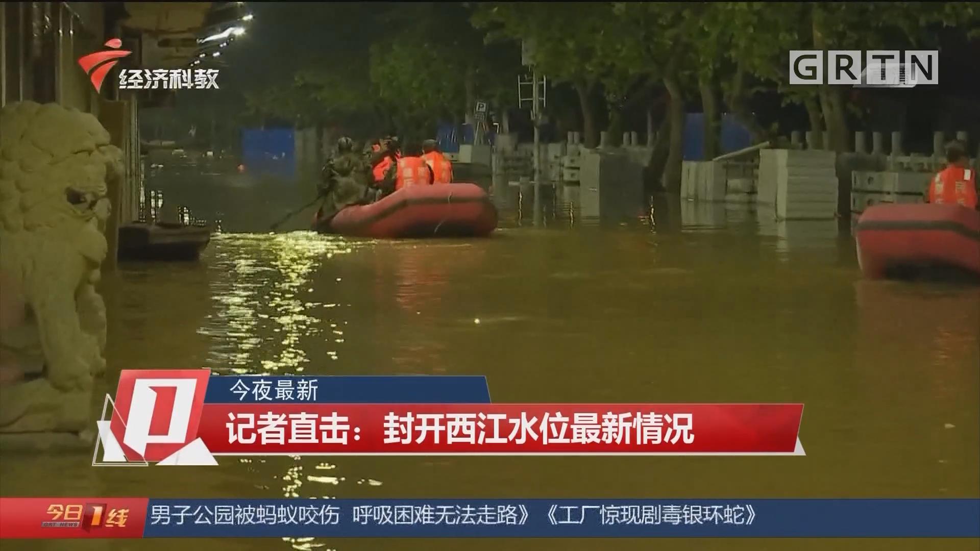 今夜最新 记者直击:封开西江水位最新情况