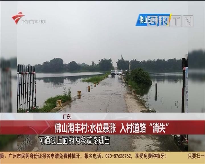 """广东 佛山海丰村:水位暴涨 入村道路""""消失"""""""