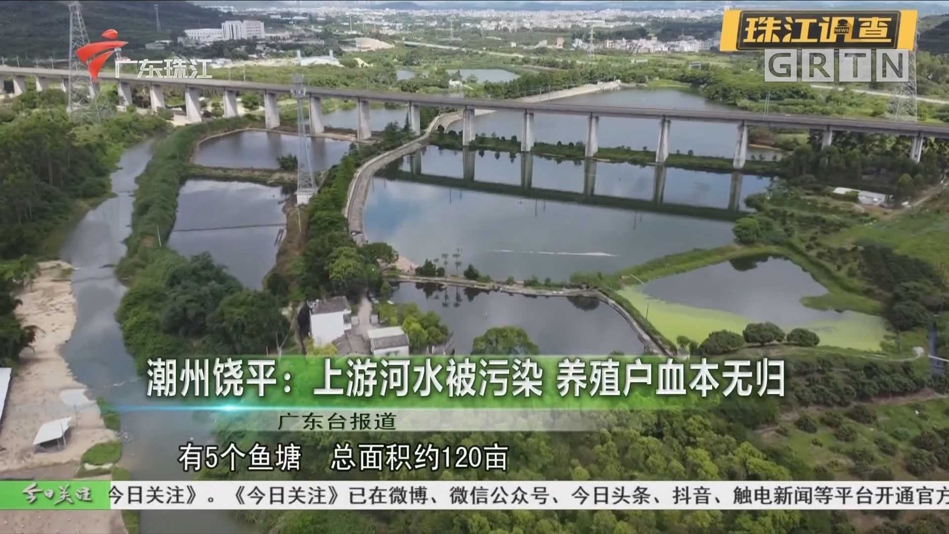 潮州饶平:上游河水被污染 养殖户血本无归