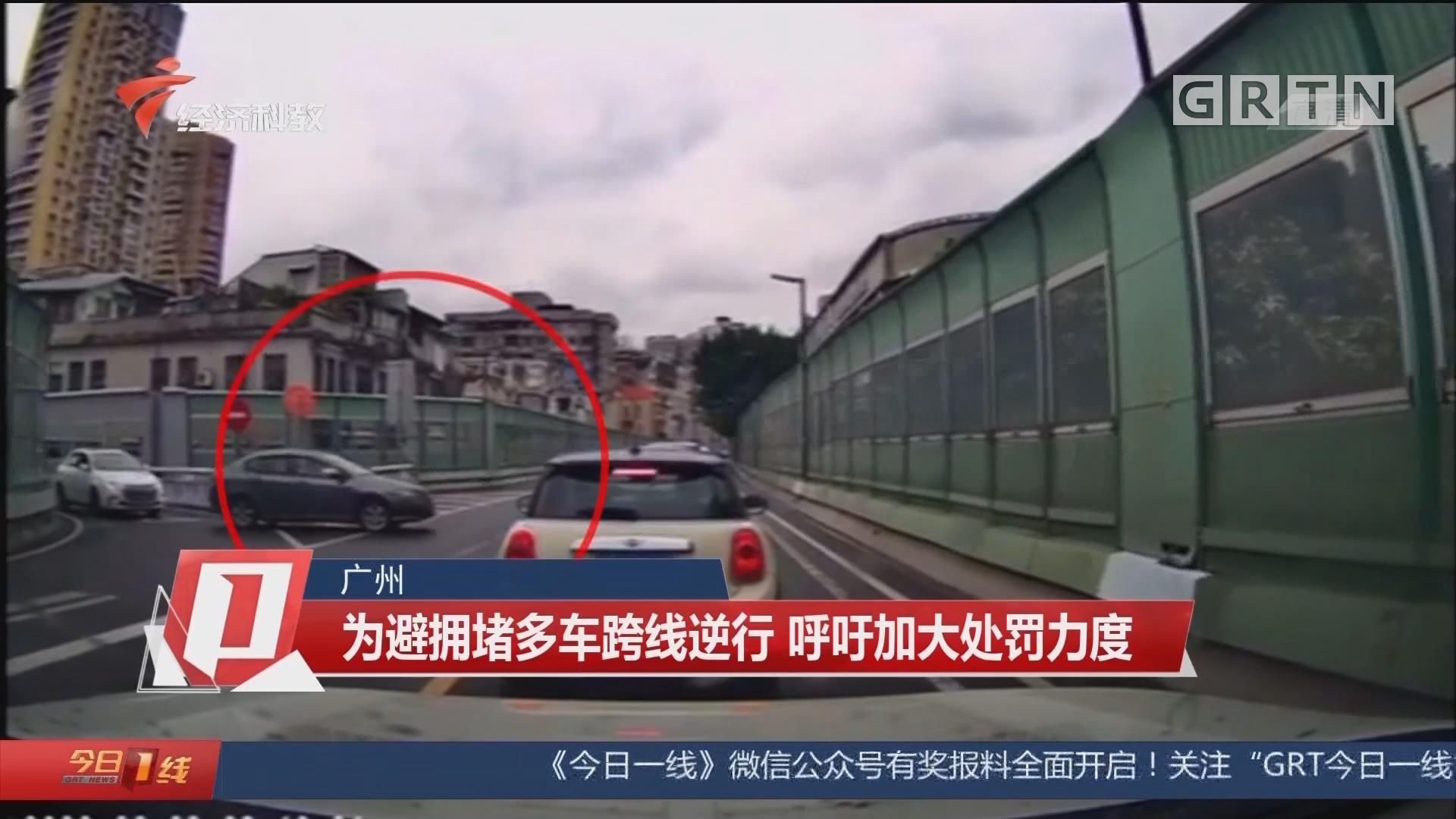 广州 为避拥堵多车跨线逆行 呼吁加大处罚力度