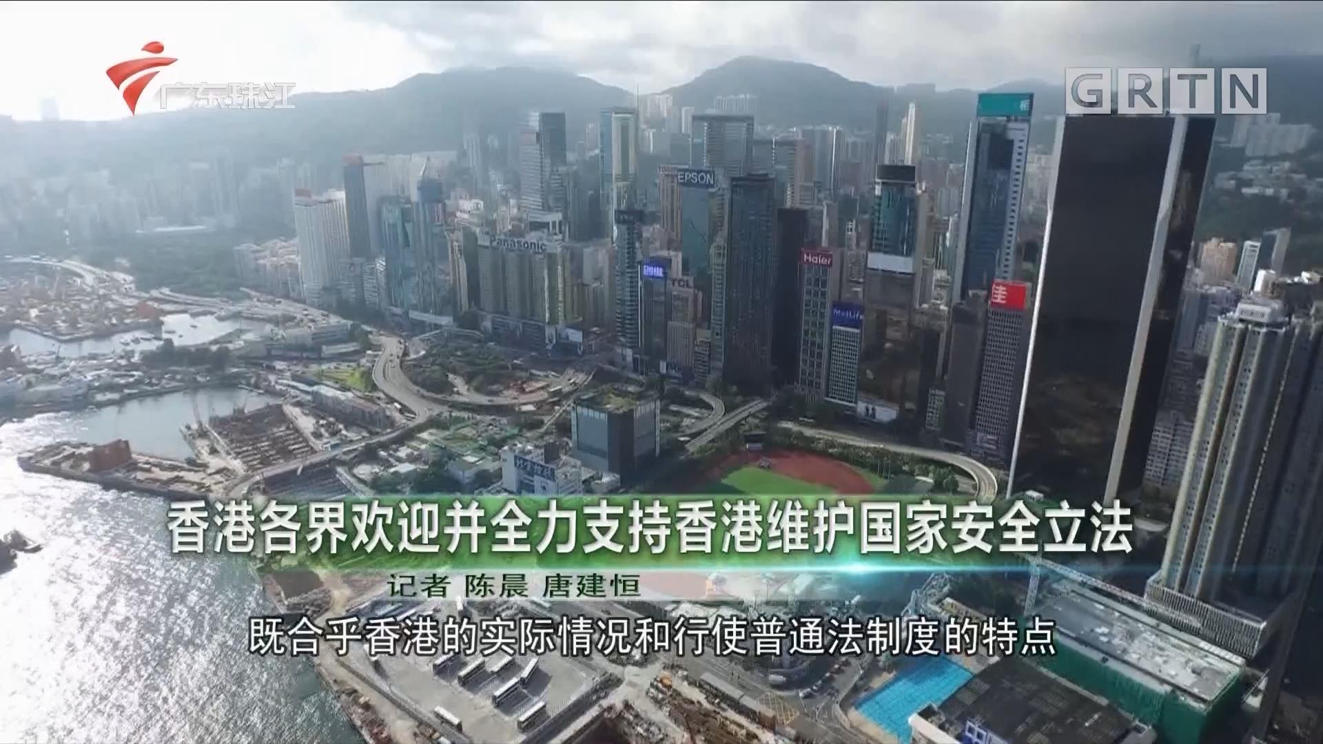 香港各界欢迎并全力支持香港维护国家安全立法