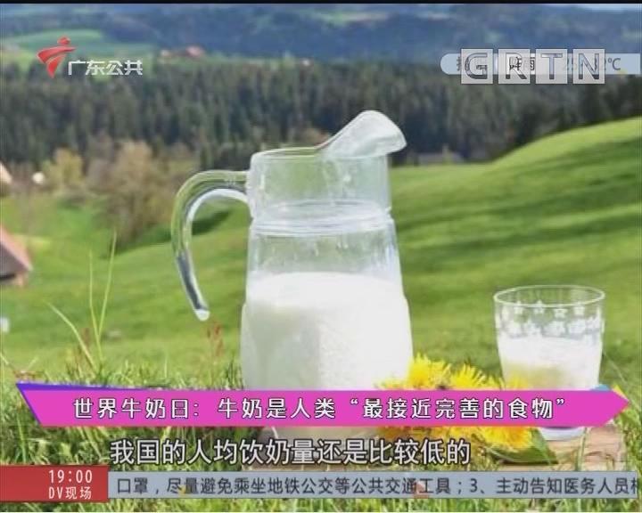 """世界牛奶日:牛奶是人类""""最接近完善的食物"""""""