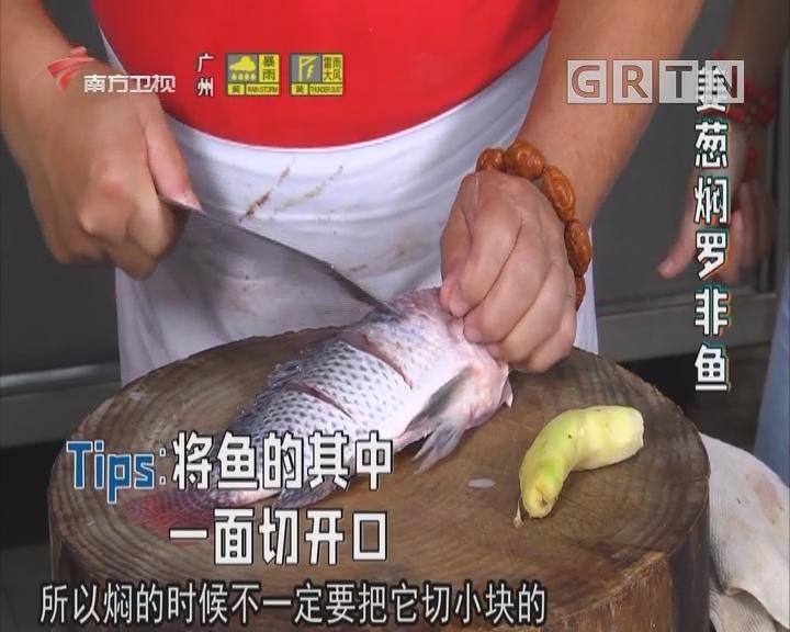 姜葱焖罗非鱼