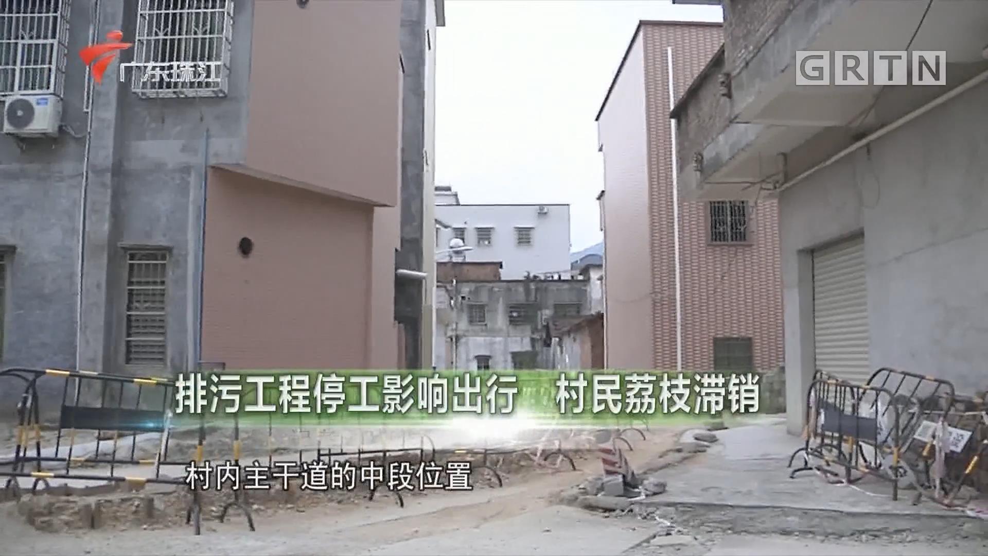 排污工程停工影响出行 村民荔枝滞销